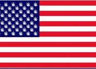 Five More States May Make Pot Legal; Cannabis Ballot Initiatives 2016