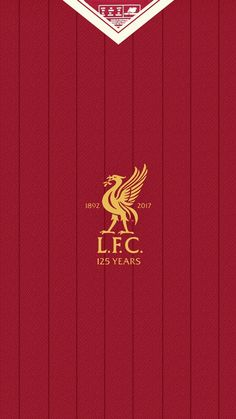 bcd5377fd 206 Best LFC Shirts images