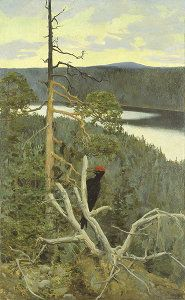 Palokärki The Great Black Woodpecker Akseli Gallen-Kallela oil 1892 private collection Palokärki was painted near Lake Paanajärvi. The great black woodpecker was a symbol of loneliness and freedom for the artist. Gallen-Kallela described the. Landscape Art, Landscape Paintings, Landscapes, Scandinavian Paintings, Merian, Nordic Art, Chur, Art Database, Monet