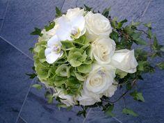 inspirrasjon Cabbage, Vegetables, Rose, January, Pictures, Roses, Vegetable Recipes, Collard Greens, Veggies