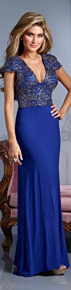 Terani Couture E2146 Evening Fall 2013 Gown ~ TNT ~