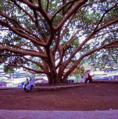 o mundo cabe no buraco da agulha: Lalibela, Etiópia