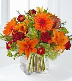 Bring a touch of splendor with lush autumn flowers