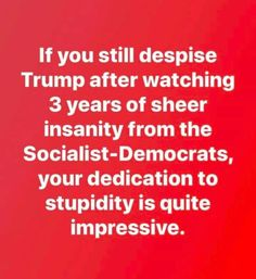 """""""Knee Jerkers"""",STOP, read this again and THINK! Trump hasn't buckled under the Dems insanity - he's fighting for America! True Quotes, Great Quotes, Funny Quotes, Conservative Memes, Trump Is My President, Liberal Logic, Political Quotes, Truth Hurts, Stupid People"""