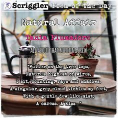 Scriggler Poem of the Day:  Natural Affair by Tania Plumadore https://scriggler.com/DetailPost/Poetry/30763