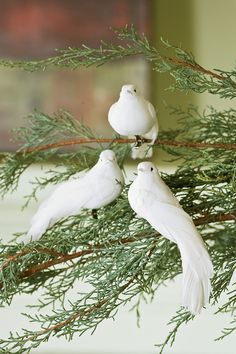 Clip-on Dove Christmas Ornaments | Buy from Gardener's Supply