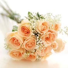 Classic bouquet of peach roses with babys breath <3 from http://www.google.co.uk/imgres?um=1=en=active=X=1280=739=isch=V3LW6j2SFKupoM:=http://www.streetdirectory.com/florist/singapore/roses/peach_roses/58/12_champagne_roses_hand_bouquet/3406/=_C-g2gSBLbF0xM=http://www.streetdirectory.com/img/florist/sparkling_champagne_FA3406_300.jpg=300=300=q_CwT7XnLovP4QTluozYCQ=1=hc=958=127=4156=225=225=105=126