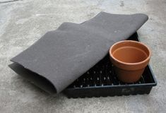 Self Watering Tray Self Watering, Easy Projects, Garden Planning, Indoor Garden, Container Gardening, Tray, Propagation, Greenhouses, Babies