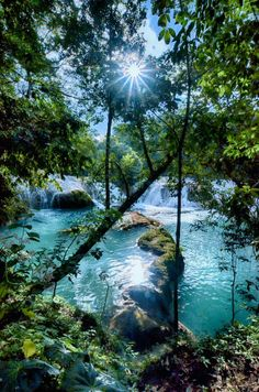 Agua Azul in Chiapas, Mexico - swam here. Water is freezing compared to heat