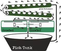 aquaponic diagrams | ebb and flow gravity feed aquaponic diagram