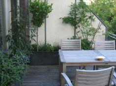 Balkon ontwerp: groen uitzicht vanuit binnen op de daktuin ...