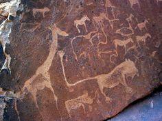 Lion Twyfelfontein Namibia