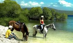 things to do in Bali - riding in West Bali National Park