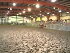 Read the Horse Blog... http://rideaprettypony.blogspot.com/