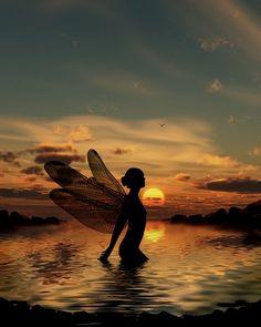 Julie Fain's Fairy at Sunset