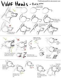stap voor stap tekenen neushoorn  google zoeken  dieren