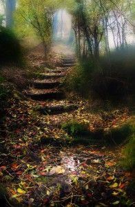 Into the Mystic, Midleton, Munster, Ireland