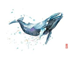 Humpback whales have the most complex songs of all whale species in the ocean. Any listener will be entranced by their haunting music. Watercolor Whale, Watercolor Animals, Watercolor Paintings, Watercolor Paper, Watercolor Jellyfish, Tattoo Watercolor, Wildlife Paintings, Animal Paintings, Animals Tattoo