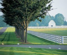 white fences and green grass