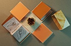 """""""Seed Case Collection"""" by Margy O'Brien. Four handmade books in a box with origami lid, yucca pod. Four 2.75"""" x 2.75"""" mini books are filled with pencil drawings of botanical seeds, cases."""