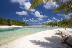 12 Best Tikehau Images Tahiti Tikehau Pearl Beach Resort