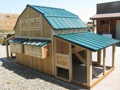 Chicken Coop Plan Material List The Coop Plex 2 Big Chicken Coops in One | eBay