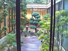 Charming Japanese Style Courtyard Garden comes with Brown Wooden Decks and Green Grass
