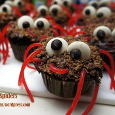 Spider Cupcakes: These spider cupcakes are not only adorable but they taste absolutely delicious! Perfect for birthday parties and Halloween!