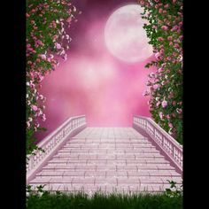 """Photo from album """"Pink_Garden"""" on Yandex. Photoshop Photography, Photography Backdrops, Nature Photography, Photography Studio Background, Studio Background Images, Illustration Blume, Photo Background Images, Picsart Background, Pink Garden"""