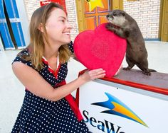 Luckiest Woman In The World Has An Otter For Her Valentine