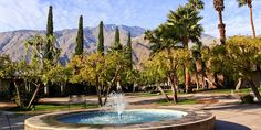 Extend your trip to Coachella with a few glorious days in Palm Springs Avalon Hotel, Us West Coast, Salvation Mountain, Parker Palm Springs, Palms Hotel, Glorious Days, Camping Activities, Camping Ideas, Disney Parks
