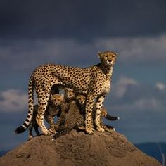 """Mother and Child "" Photo Assignment -- National Geographic Your Shot"