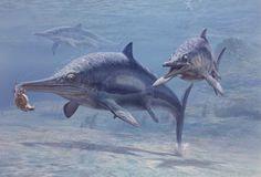 Ichtyosaure, début Trias à fin Crétacé