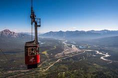 Jasper SkyTram Alberta Travel, Alpine Adventure, Attraction Tickets, What To Do Today, Canadian Rockies, Mountain Range, Alberta Canada, Canada Travel, Travel
