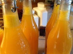 Fermented Mango Soda made from Ginger Bug
