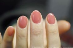 Opting for bright colours or intricate nail art isn't a must anymore. This year, nude nail designs are becoming a trend. Here are some nude nail designs. Nail Shapes Squoval, Nails Shape, Hair And Nails, My Nails, Short Round Nails, Short Oval Nails, Super Nails, Nagel Gel, Gel Nail Art