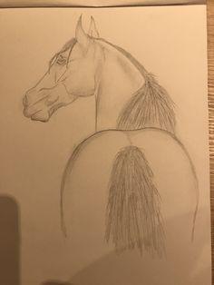 Pferd, Zeichnung, Bleistift