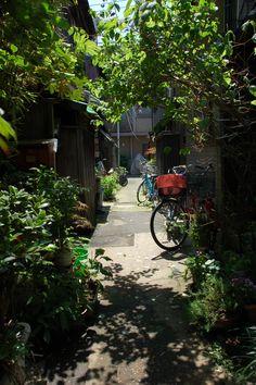 https://flic.kr/p/fdiKy | bicycle forest | 2006.05.20 12:56, Tokyo Nezu (根津)