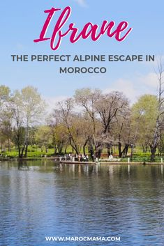 Take a trip to Iran, it's a wonderful alpine escape! Top Destinations In Usa, Africa Destinations, Morocco Travel, Africa Travel, Travel Guides, Travel Tips, Visit Marrakech, Wanderlust Travel, Romantic Travel