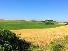 Sommerfelder Golf Courses, Country Roads, Shade Perennials, Heaven, Landscape