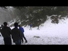 REAL BIGFOOT FOOTAGE - YouTube