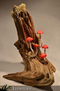 LUMYCELIUM - Rougapostrophe - Décoration de petits champignons à LED sur souche de bois et mousse stabilisée