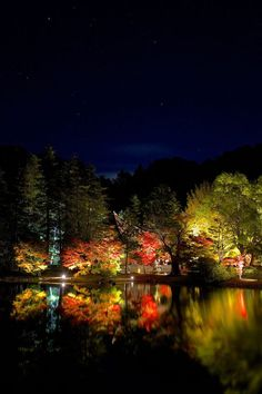 Iwaki, Hukushima, Japan       福島県いわき市 国宝 白水阿弥陀堂 紅葉ライトアップ2014
