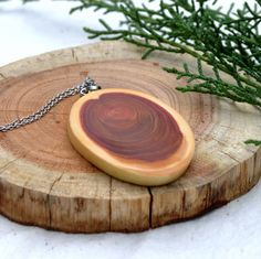 Wood Necklace Natural Wood Pendant Wood Slice by TreeFernDesigns