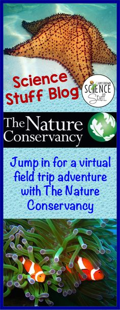 Link up and hang out with The Nature Conservancy for a super-fun classroom virtual field trip! Field trips are a common occurre. Science Classroom, Teaching Science, Science Activities, Educational Activities, Home Learning, Fun Learning, Virtual Field Trips, Middle School Science, Science Lessons