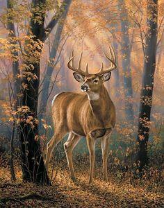 reindeer in the forest painting Wildlife Paintings, Wildlife Art, Animal Paintings, Deer Paintings, Whitetail Deer Pictures, Deer Photos, Hunting Art, Deer Family, Deer Art