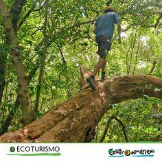 Existe un lugar donde la convivencia con la naturaleza y la fauna forman parte del día a día.... ¡es Centroamérica!