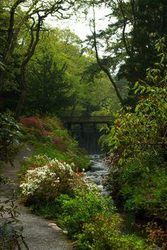 Bodnant Garden, Conwy Valley, north Wales, U.K.