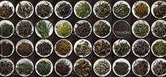 True Quality, True Taste - Tea Hong Tea Varieties, Plants, Plant, Planets