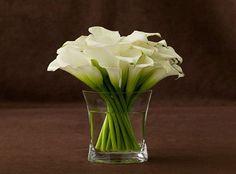 white calla lillies in vase Home Flowers, Table Flowers, White Flower Arrangements, Flower Vases, Ikebana, Calla Lillies Centerpieces, Lys Calla, Calla Lilies, Deco Ballon